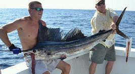 Sailfish Destin FL Finest Kind Charters