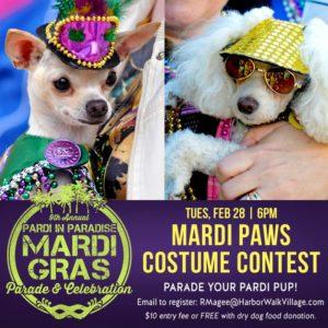 Mardi Paws Costume Contest 2017