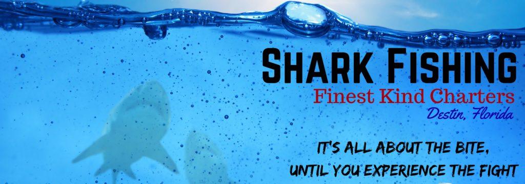 shark fishing charter Destin