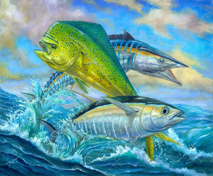 Wahoo Mahi and Tuna Art