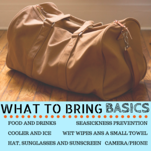 What to Bring Basics