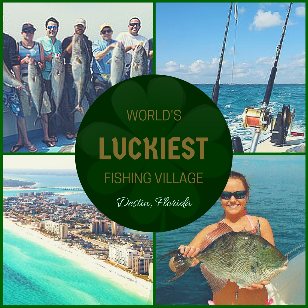St patrick 39 s day in destin fl charter fishing destin for Fishing destin fl
