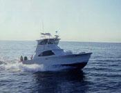 Backlash charter boat off the coast of Destin