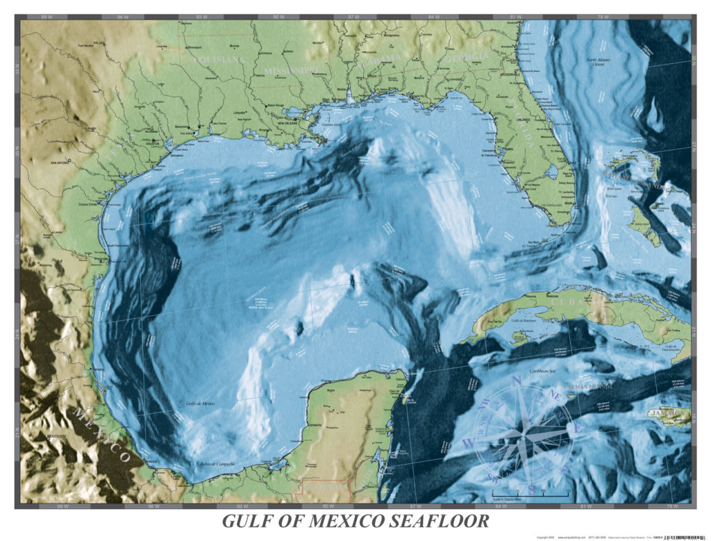 Gulf of Mexico Seafloor